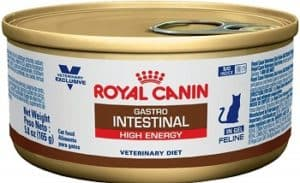 Royal CANIN Feline Gastrointestinal Canned Cat Food
